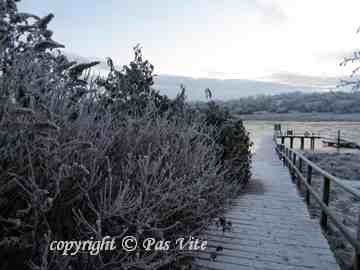 Snow on the Erne