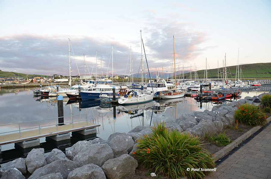 Dingle Marina; © Paul Scannell; CCO Part 3