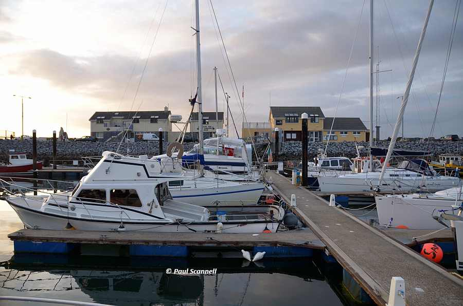Fenit Marina; © Paul Scannell; CCO Part 3
